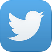 Why is it called Twitter