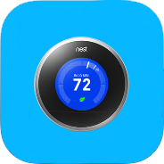 How Nest got its name