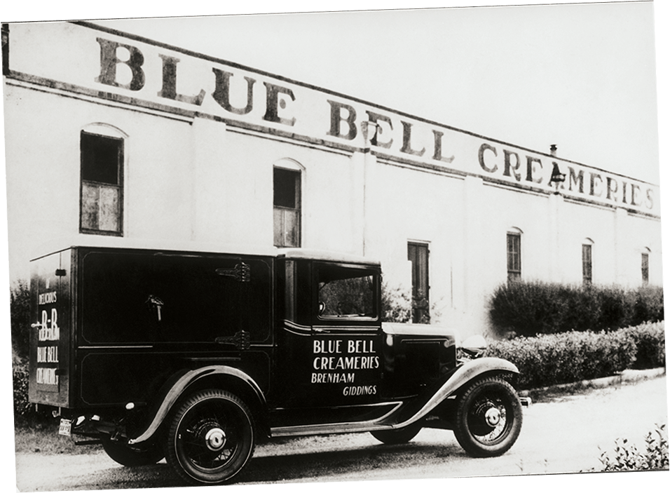 Bluebell company name